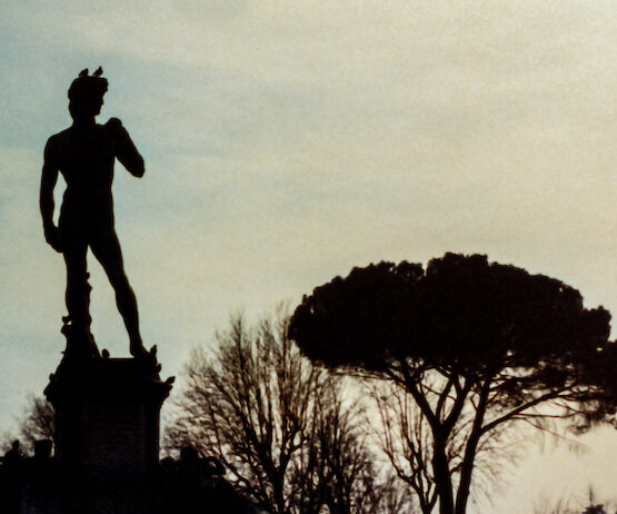 silhouette of replica David statue and a classic italian pine tree
